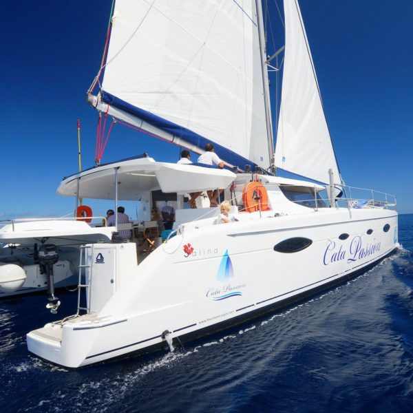 catamaran flotte cata passion